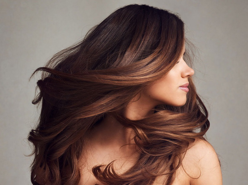 Сложное окрашивание волос для брюнеток: 10 модных вариантов этого года